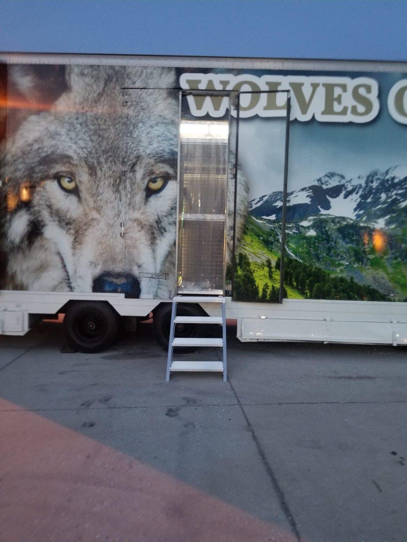 Wolf Show Trailer